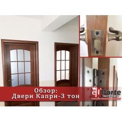 Обзор межкомнатных дверей Капри-3 тон ПО/ПГ (дуб тонированный) Двери Белоруссии